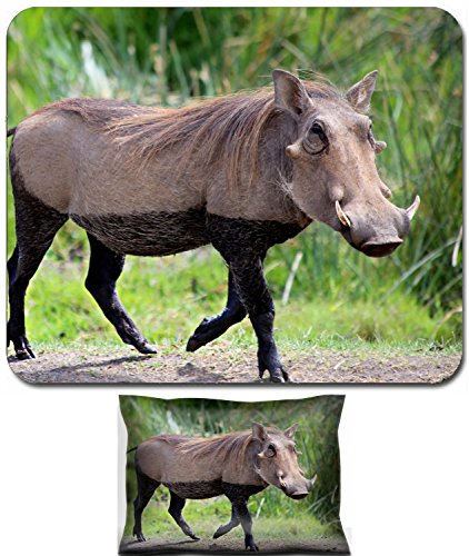 Luxlady Mouse Wrist Rest and Small Mousepad Set, 2pc Wrist Support design IMAGE: 24898225 Wild warthog dressed in lingerie by lake s dirty Ngorongoro crater Tanzania Africa - Africas Best Silky Set
