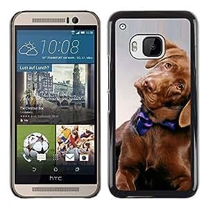 TopCaseStore / la caja del caucho duro de la cubierta de protección de la piel - Golden Retriever Puppy Dog Canine - HTC One M9