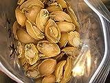 Tomox Abalone, Dalian abalone, good dryness 500g