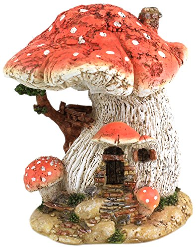 Top Collection Miniature Terrarium Mushroom