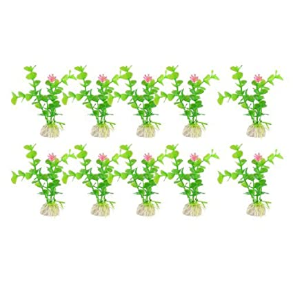 Amazon.com : eDealMax 10 piezas de pescado tanque de agua de la planta/Flor, DE 4, 3 pulgadas, Caliente/rosa / Verde : Pet Supplies