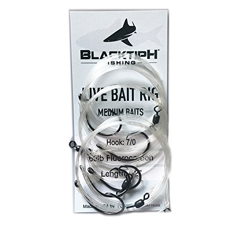 BlacktipH Live Bait Rigs, Small, Medium, and Large, 5 Pack, Fluorocarbon Leaders, Black Nickel Circle Hooks, MADE IN THE USA (medium)