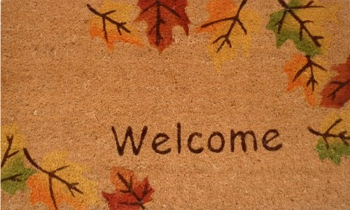 Home & More 120941729 Autumn Breeze Doormat, 17