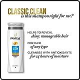 Pantene, Shampoo, Pro-V Classic Clean, 25.4 fl