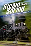 Steam in the Spring