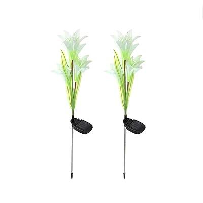 2Pc 4-tête solaire alimenté LED Lily Flower Garden Light, lampe de pelouse, puissance solaire Lily Light, paysage extérieur YardGrassland Party lampe décorative, Lily Lily Flower lampe réalis