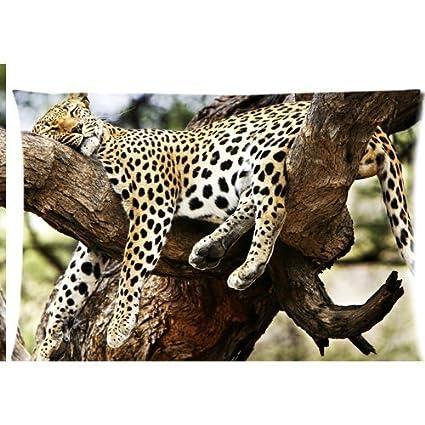 amazon com bizwheo sleeping cheetah on the old tree branch zippered