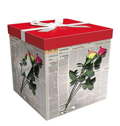"""Gift Box 10""""X10""""X10"""" - Les Roses Collection - Easy to Assemble & Reusable - No Glue Required - Ribbon, Tissue Paper, and Gift Tag Included - EZ Gift Box by Endless Art US"""