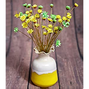 100 Stems Natural Dry Flowers Brazilian Small Star Daisy Decorative Dried Flowers Mini Daisy Chamomile Bouquet for Wedding Floral Arrangements Home Decorations (Autumn Color) 3