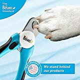 Dog Nail Clippers and Trimmer By Boshel - With