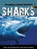 Sharks, Jen Green, 1607530465