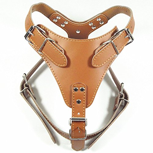 Buy leather dog harness