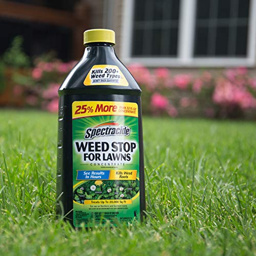 Spectracide Weed Stop For Lawns Concentrate, 40 oz للبيع
