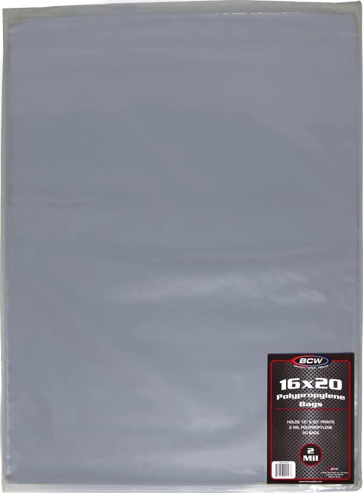 1000 BCW 11X17 Sleeves