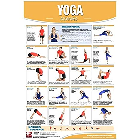 Amazon.com: Productive Fitness CYL Yoga Asanas - Laminated ...