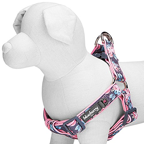 Blueberry Pet 2 Patterns Soft & Comfortable Step-in Rosy Prints Girly Padded Dog Harness, Chest Girth 16.5