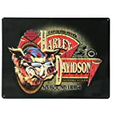 Harley-Davidson Tin Sign - No Boundaries HOG