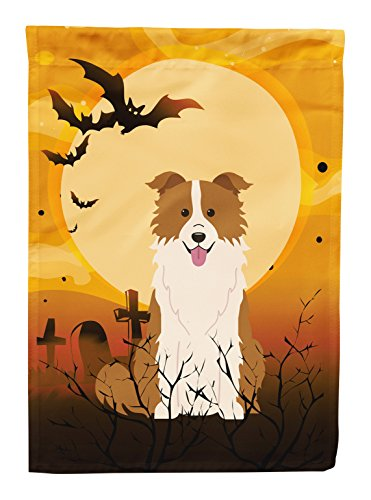 Caroline's Treasures BB4385GF Halloween Border Collie Red White Garden Size Flag, Small, Multicolor