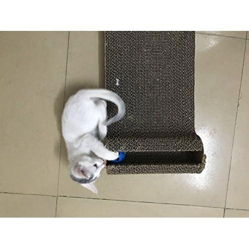 Papier ondulé Griffoir avec boule de Bell gratuit à herbe à chat pour chat  Idéal pour 52af9679fe68
