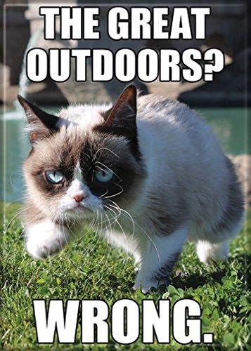 (Ata-Boy Grumpy Cat 'Great Outdoors' 2.5