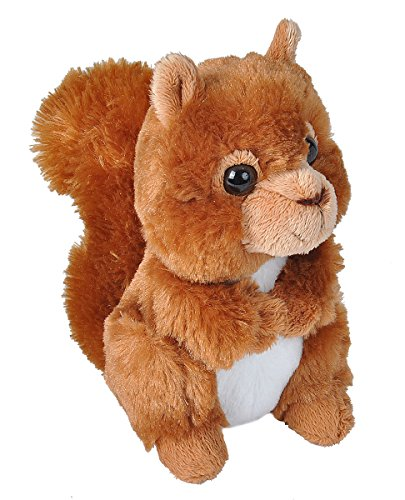 (Wild Republic Red Squirrel Plush, Stuffed Animal, Plush Toy, Gifts for Kids, Hug'ems, 7 inches)