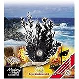 Corvus A101007 - Wundermuschel, schwarz