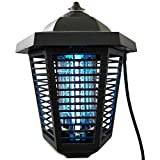 Nozkito Bug Zapper Lantern for Outdoor and Indoor Use. Mosquito and Insect Killer UV Lamp. Great for Backyard, Patio, Porch and Garden. Powerful 2000 Volt Grid. Weatherproof and Easy to Clean