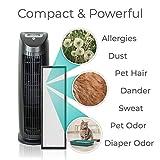 Alen T500 HEPA Air Purifier, Allergies, Dust, Pet Dander and Odor, Black