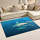 Shark Area Rugs Review and Comparison