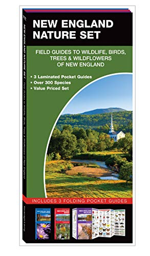 New England Nature Set: Field Guides to Wildlife, Birds, Trees & Wildflowers of New England