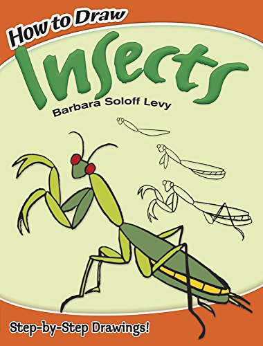 How to Draw Insects (Dover How to Draw)