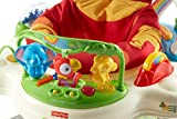 Image of the Fisher-Price Rainforest Jumperoo
