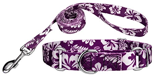 Country Brook Design | Purple Hawaiian Martingale Dog Collar & Leash - Medium