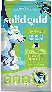 Solid Gold - Leaping Waters with Cold Water Salmon & Vegetable Recipe - Grain Free & Gluten Free for S