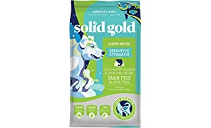 Solid Gold - Leaping Waters with Cold Water Salmon & Vegetable Recipe - Grain Free & Gluten Free for Sensitive Stomachs - Holistic Adult Dry Dog Food - 22lb Bag