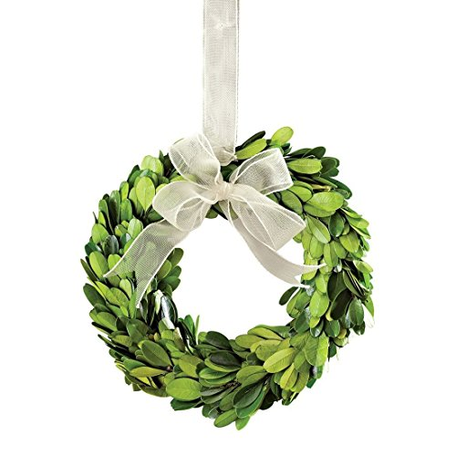(Napa Home & Garden 6-inch Preserved Boxwood Wreath with Ribbon)