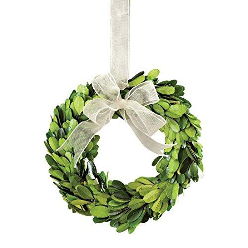 Fresh Wreath - Napa Home & Garden 6-inch Preserved Boxwood Wreath with Ribbon