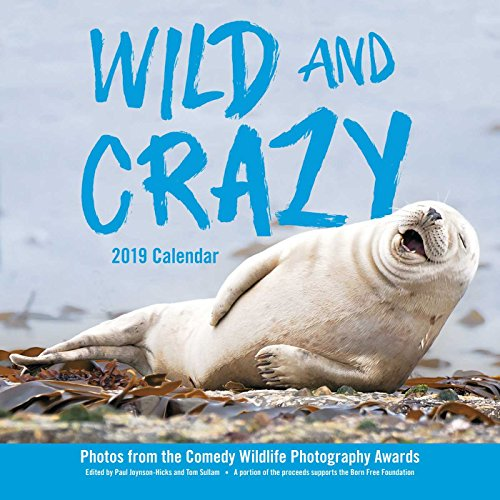 Wild and Crazy 2019 Wall Calendar