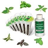 AeroGarden International Basil Seed Pod Kit (6-Pod)