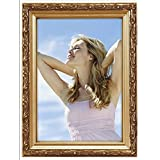 Malden International Designs Traditions Molding Wooden Picture Frame, 5 by 7-Inch, Gold Bezel