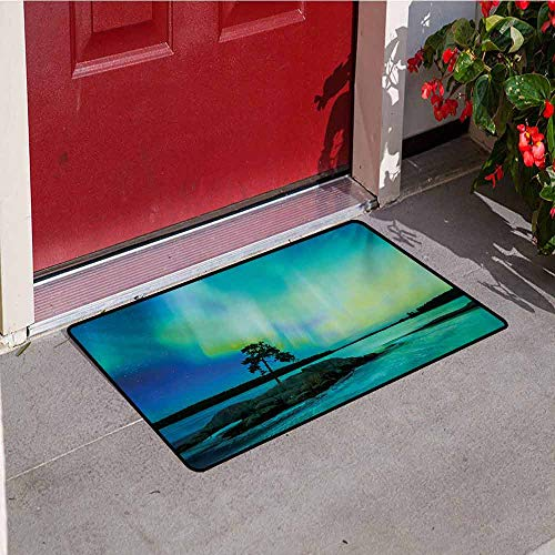 Aurora Borealis Welcome Door mat Single Tree Over Rocky Stone by River Borealis Earth Beauty Image Door mat is odorless and Durable W29.5 x L39.4 Inch Teal Blue Lime Green (Aurora Borealis Montana Finish)