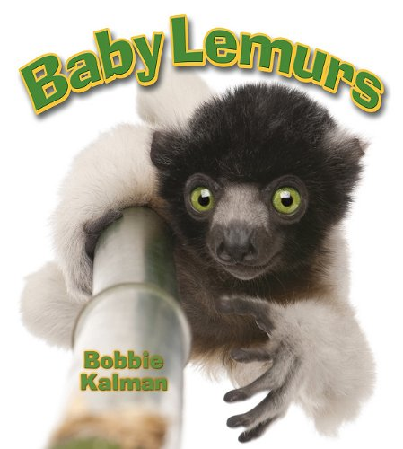 Baby Lemurs (It's Fun to Learn About Baby Animals) pdf