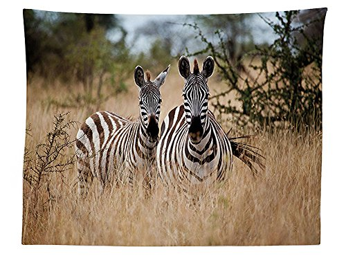 vipsung Wildlife Decor Tablecloth Kenya with Zebras in the High Bushes Looking at the Camera Striped Unique Animal Dining Room Kitchen Rectangular Table Cover Multi