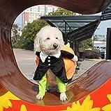 iiniim Pet Dog Cat Carrying Pumpkin Halloween Costume Fancy Party Jacket Apparel (S)