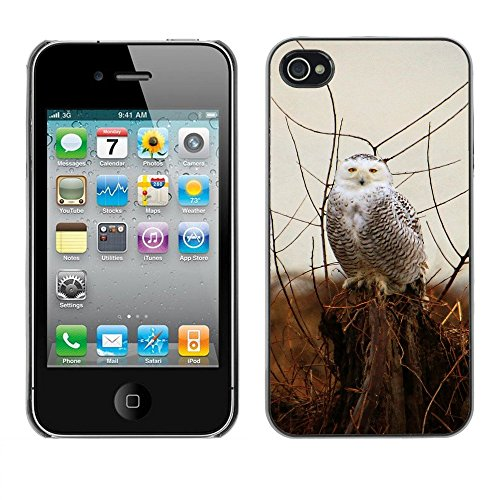 Premio Sottile Slim Cassa Custodia Case Cover Shell // F00000014 Neigeux // Apple iPhone 4 4S 4G