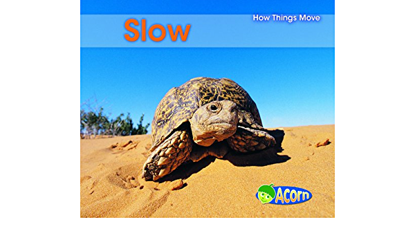 Slow things that move 6 Foods