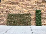 Mills Floral Faux Boxwood – Willow Lattice Screen 39 X 78 Inch