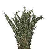 Farm Fresh Natural Rosemary - Pack 100