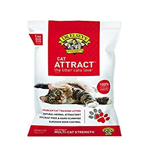 Dr. Elsey's Cat Attract Problem Cat Training Litter, 40 pound bag 24