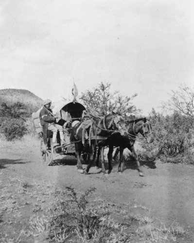 1800s photo An Indian hospital cart used by British in South Africa . Vintage a7